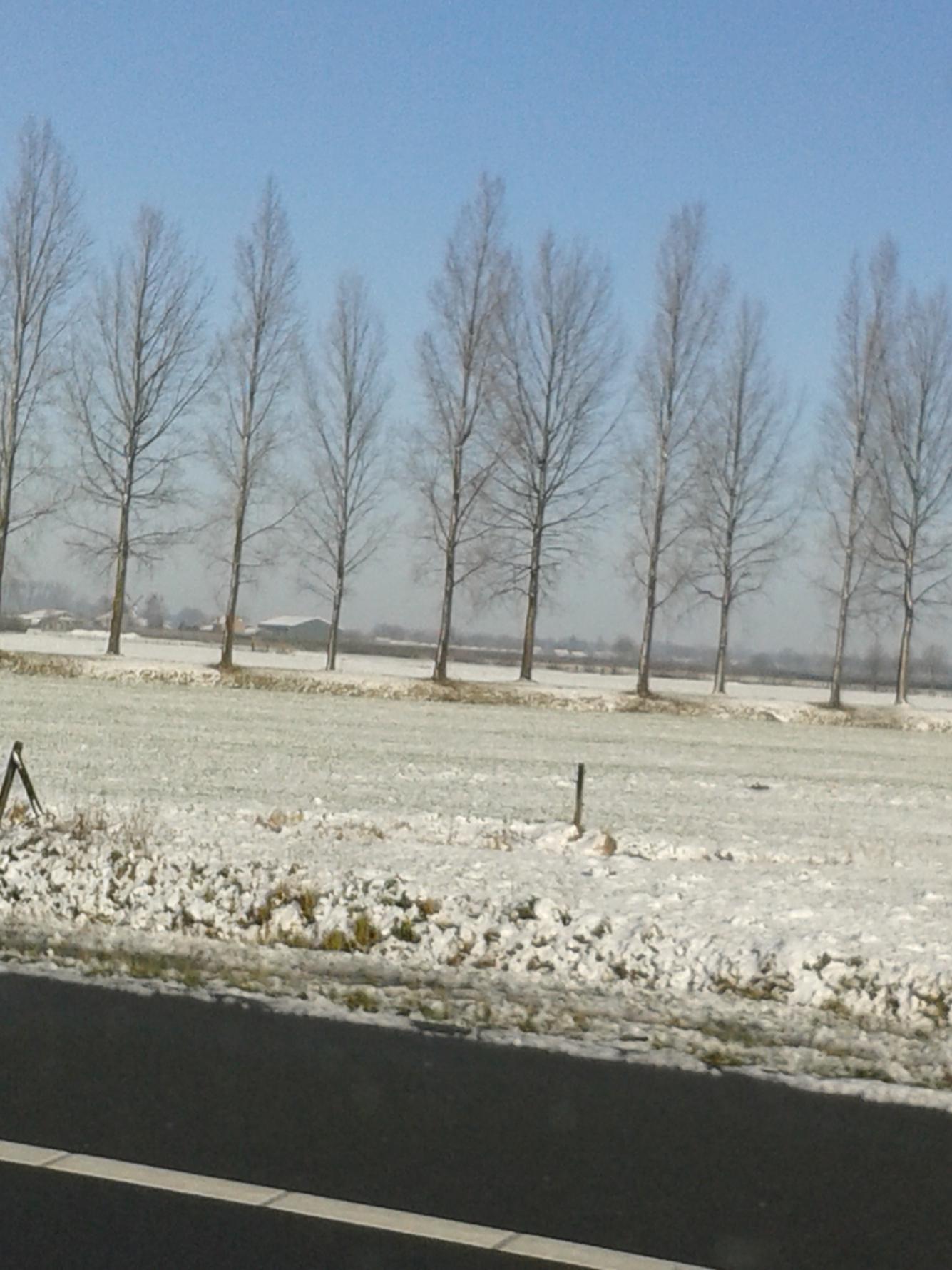 Sneeuw rosmalen