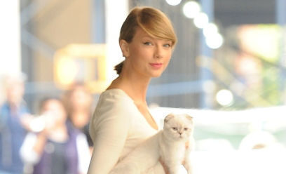 Taylor swift and cat olivia benson 1