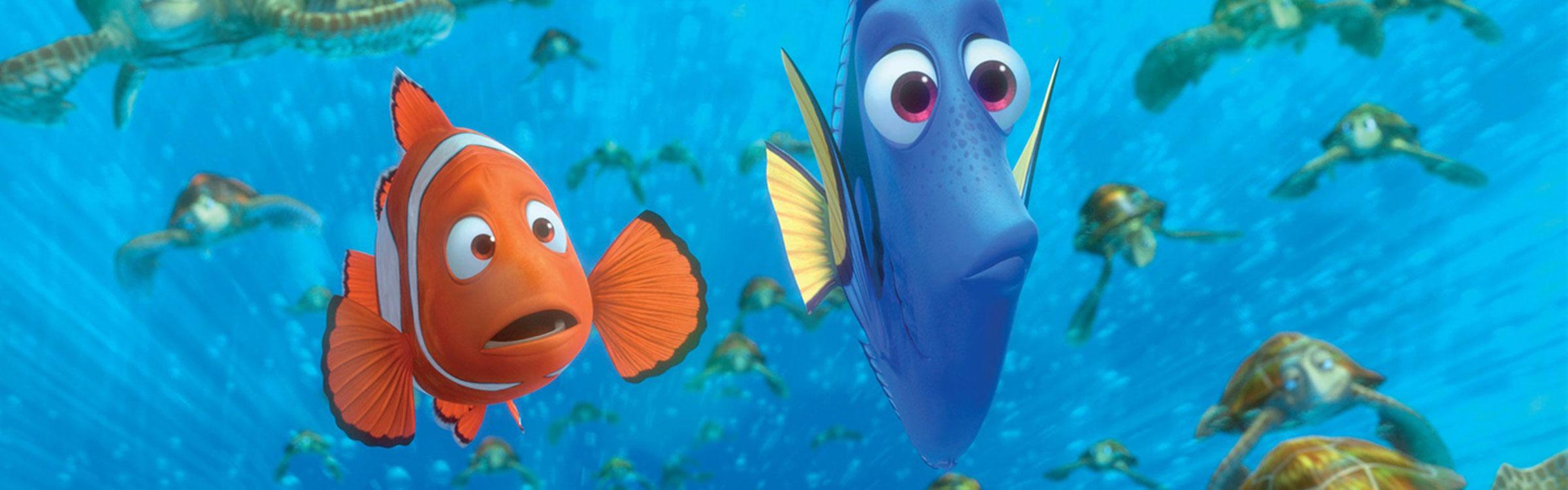 Nemo algemeen