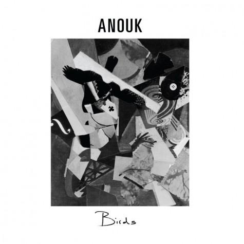Anoukbirds 475x475