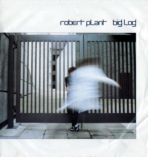 Robert plant   big log