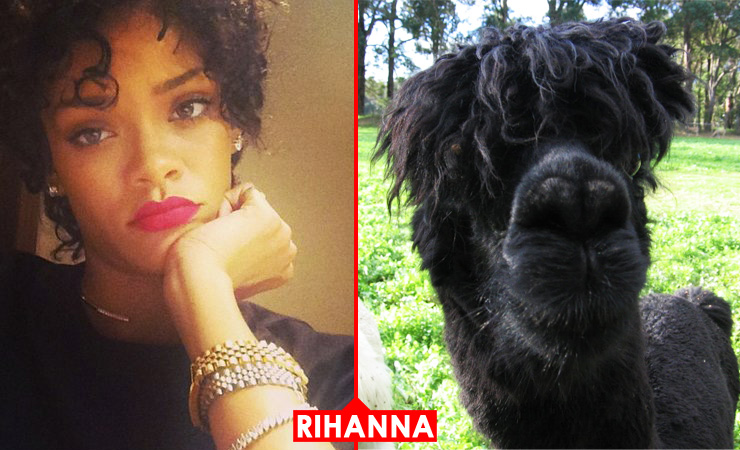Rihanna 0