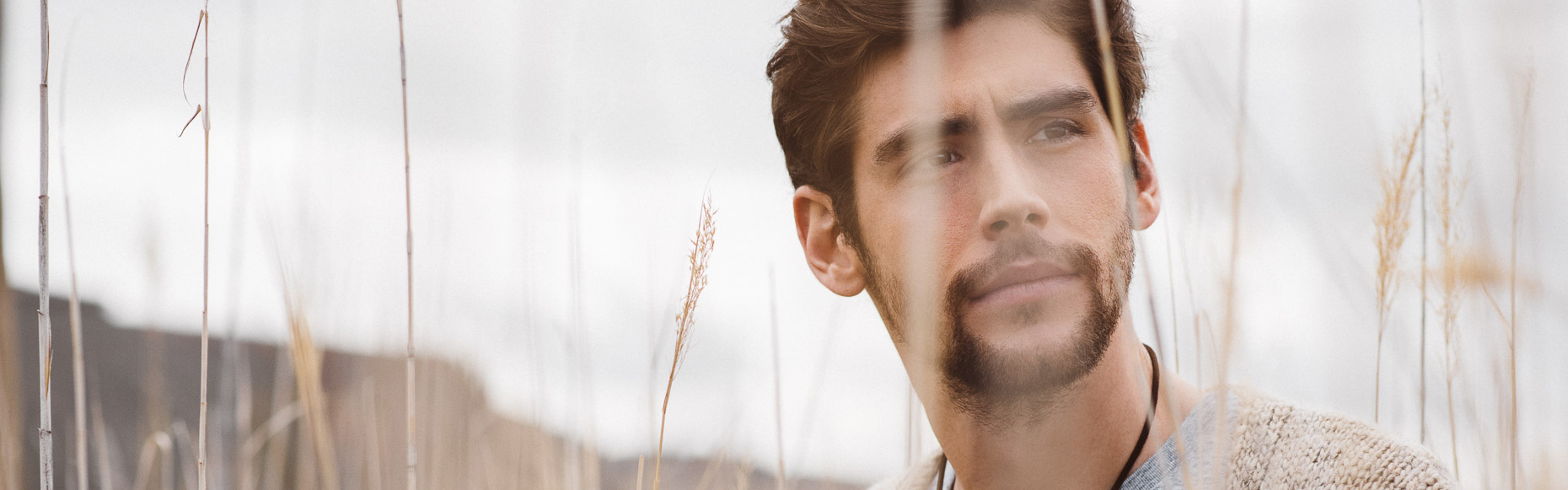 Header alvarosoler