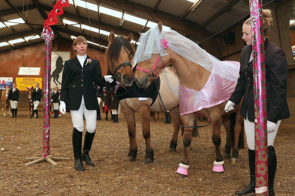 Paardenhuwelijk