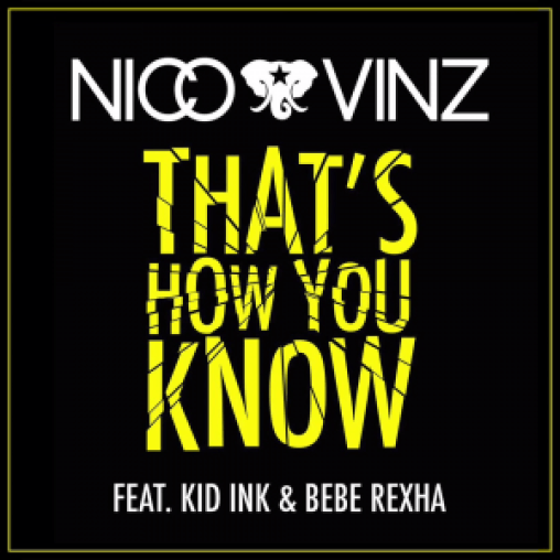 Nico vinz thats how you know 2015 mp3 download 360musicng.com