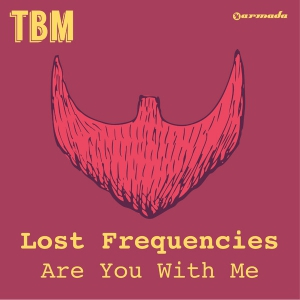 Are you with me lost frequencies